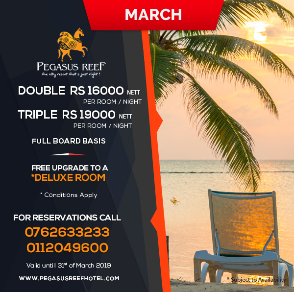 March- Room Promotion at Pegasus Reef Hotel