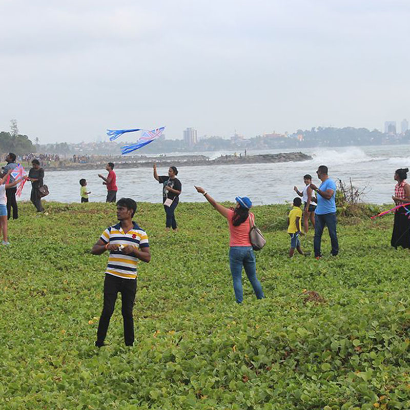 First Ever Pegasus Reef Kite Festival a Huge Success!